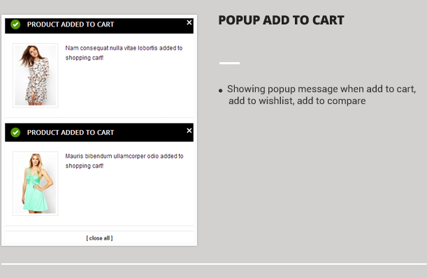 Popup Add to cart